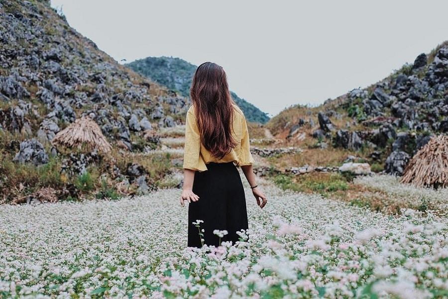 Lưu giữ những bức ảnh tuyệt đẹp tại cánh đồng hoa tam giác mạch