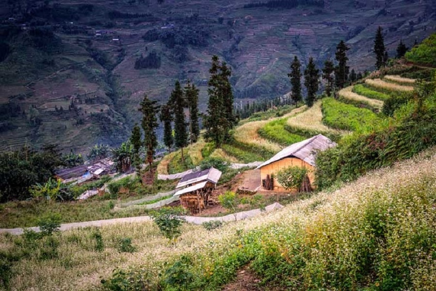 Cung đường dẫn vào thung lũng Sủng Là