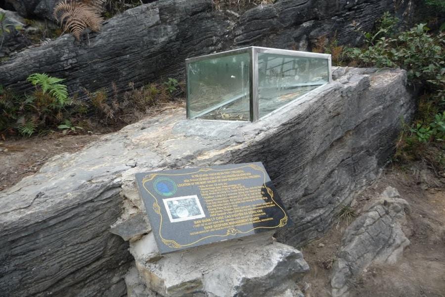 Hóa thạch Bọ Ba thùy