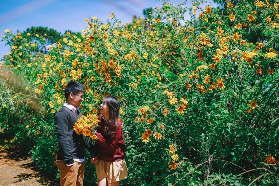 Thời tiết Ba Vì đẹp cuối thu - mùa hoa dã quỳ