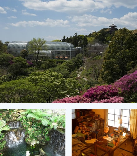 Makino Botanical Garden