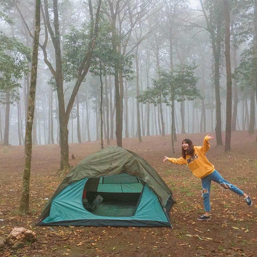Cắm trại ở rừng thông Ba Vì