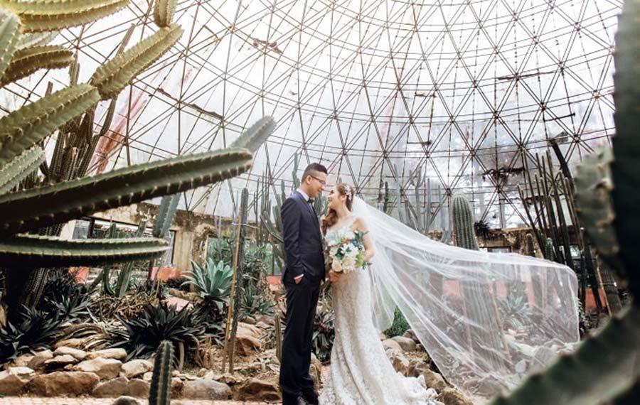 Vườn xương rồng là điểm chụp ảnh cưới lý tưởng cho các cặp tình nhân