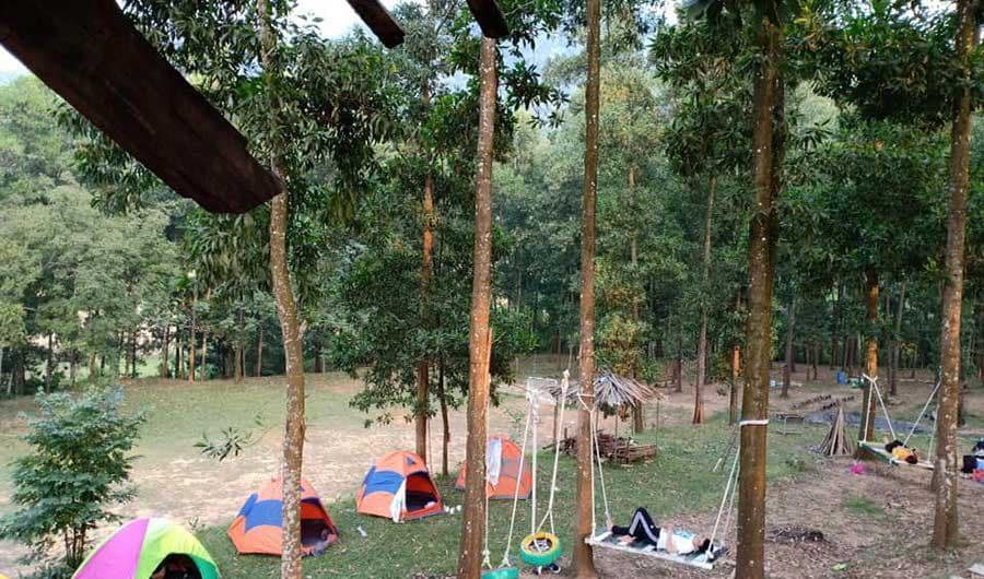 Cắm trại tại đồi thông cần tuân thủ vấn đề an toàn và bảo vệ môi trường xung quanh