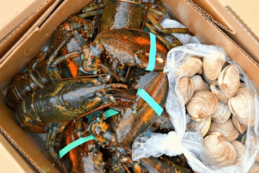 Côn Sơn có rất nhiều hải sản tươi ngon