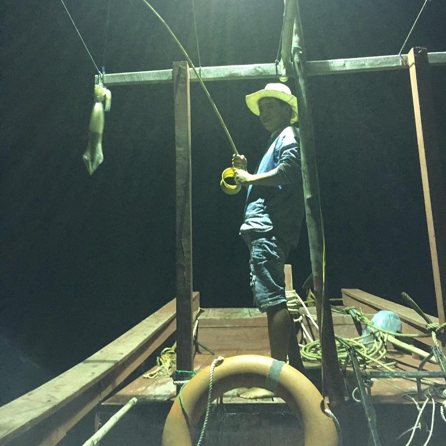 Dịch vụ câu mực đêm
