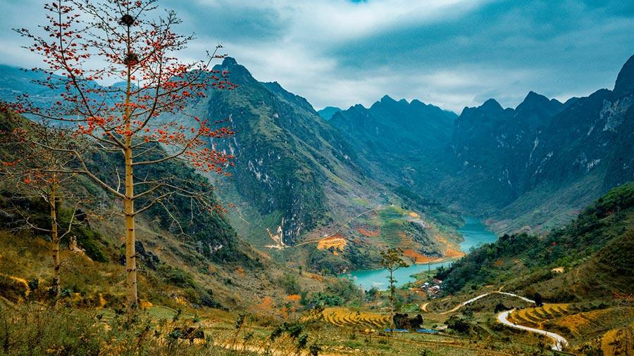 Sông Nho Quế nhìn từ xa vô cùng thơ mộng