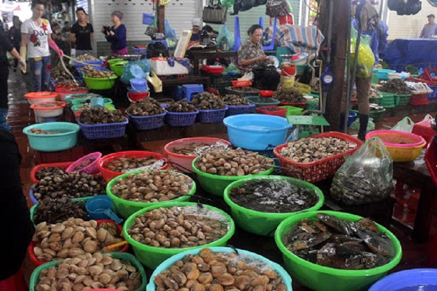 Hải sản phong phú tại chợ Cát Bà