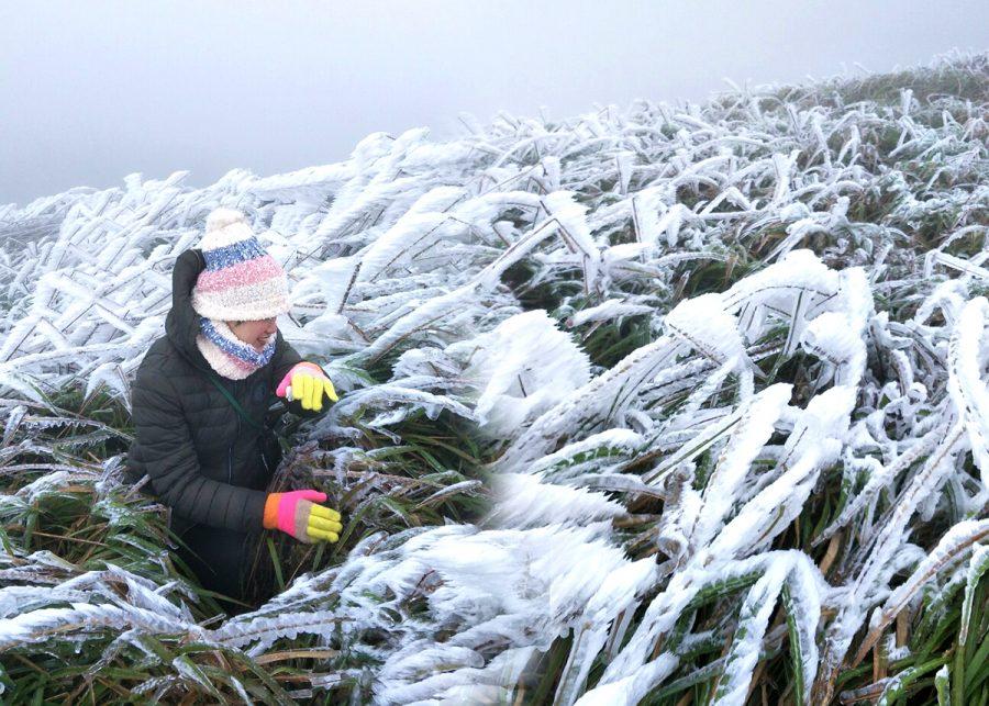 Thời tiết lạnh giá cảm giác như được đứng ở trời Âu