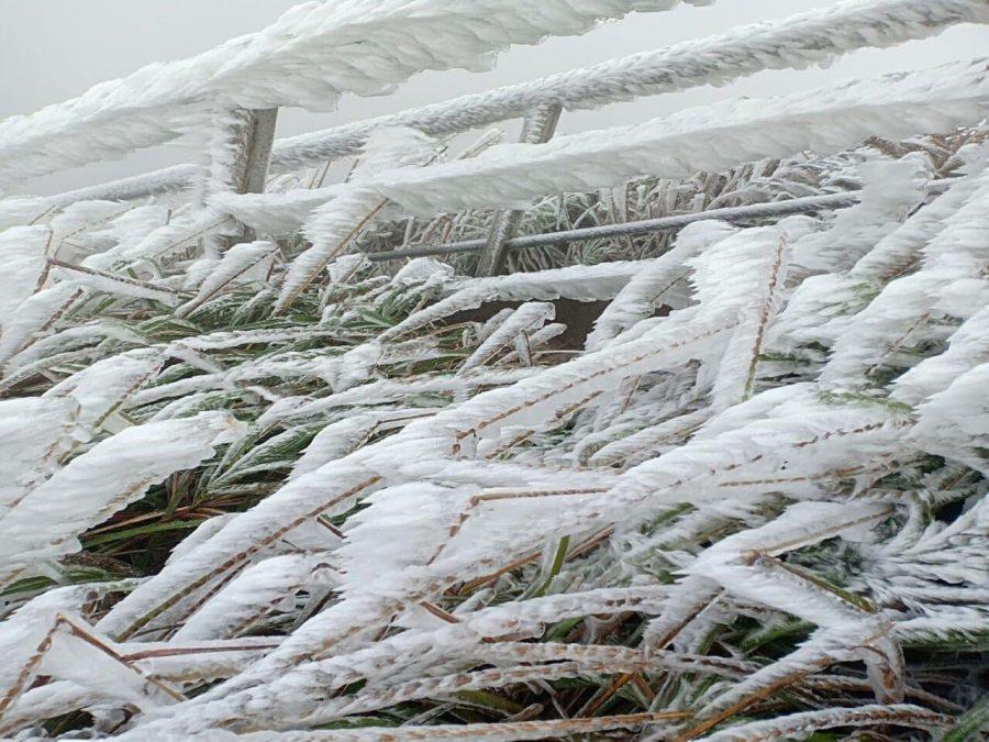 Tuyết phủ hai bên đường lên cột mốc 1305