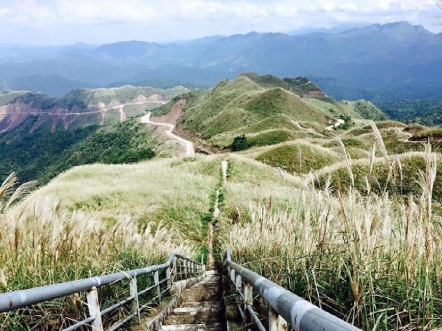 Mốc 1297 - thiên đường cỏ lau ở Bình Liêu