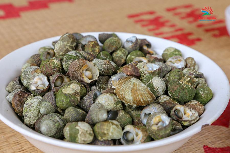 Ốc đá - đặc sản du khách nên thưởng thức khi du lịch hòn 7 Sao Cô Tô