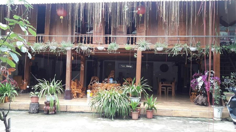 Ngôi nhà lan rừng tại Mù Cang Chải