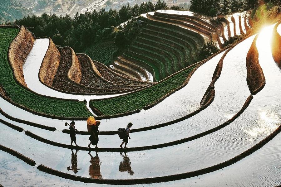 Ruộng bậc thang mùa nước đổ