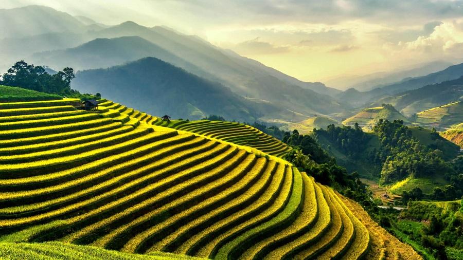 Đèo Khau Phạ là nơi ngắm ruộng bậc thang đẹp