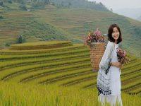 Thiếu nữ bên ruộng lúa