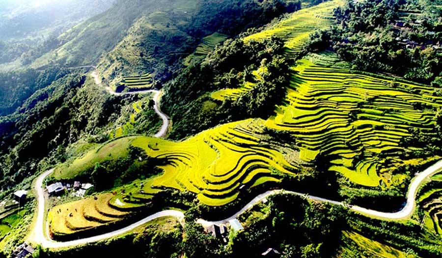 Vẻ đẹp của ruộng bậc thang Hồng Thái