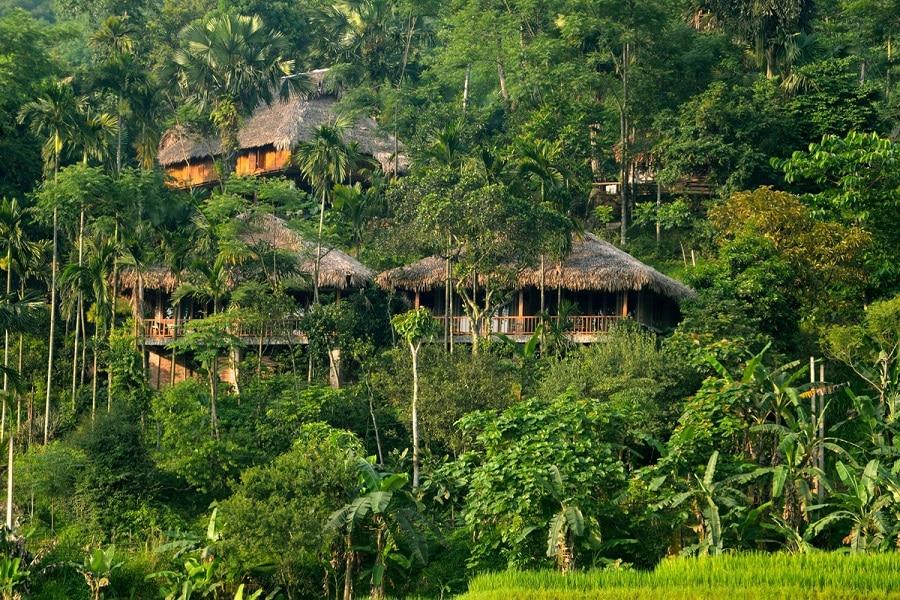Puluong Retreat được bao bọc bởi không gian xanh mát, yên bình