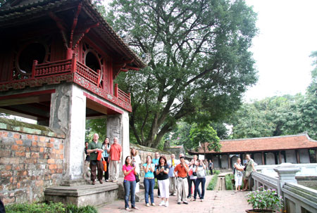 công ty du lịch Đất Việt tổ chức các tour du lịch uy tín và chuyên nghiệp